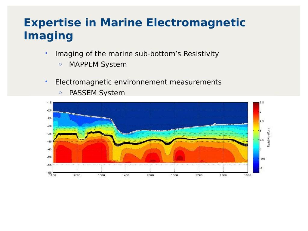 Expertise in Marine Electromagnetic Imaging • I...