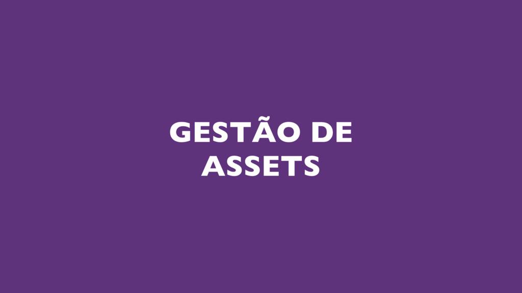 GESTÃO DE ASSETS