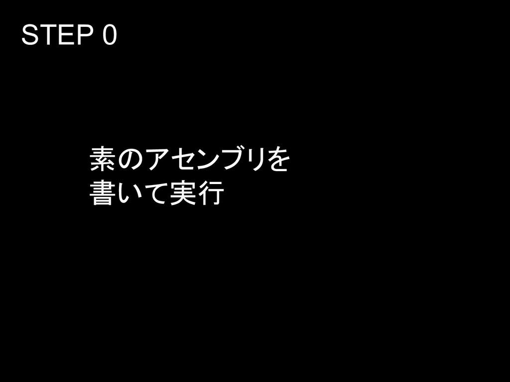 素のアセンブリを 書いて実行 STEP 0