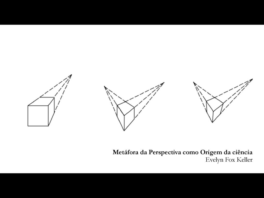 Metáfora da Perspectiva como Origem da ciência ...