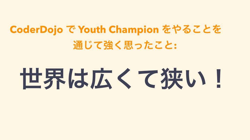 CoderDojo Ͱ Youth Champion ΛΔ͜ͱΛ ௨ͯ͡ڧ͘ࢥͬͨ͜ͱ: ੈ...