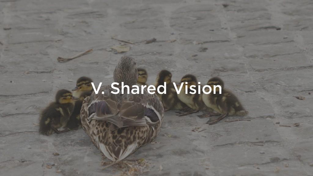 V. Shared Vision