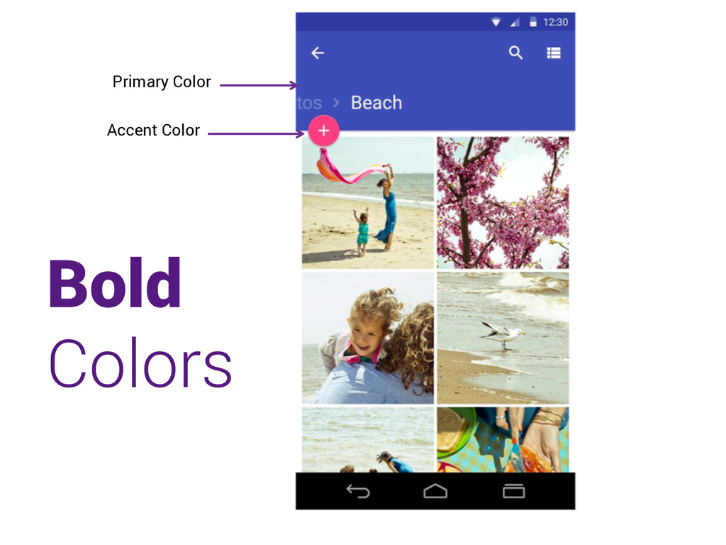Primary Color Accent Color Bold Colors