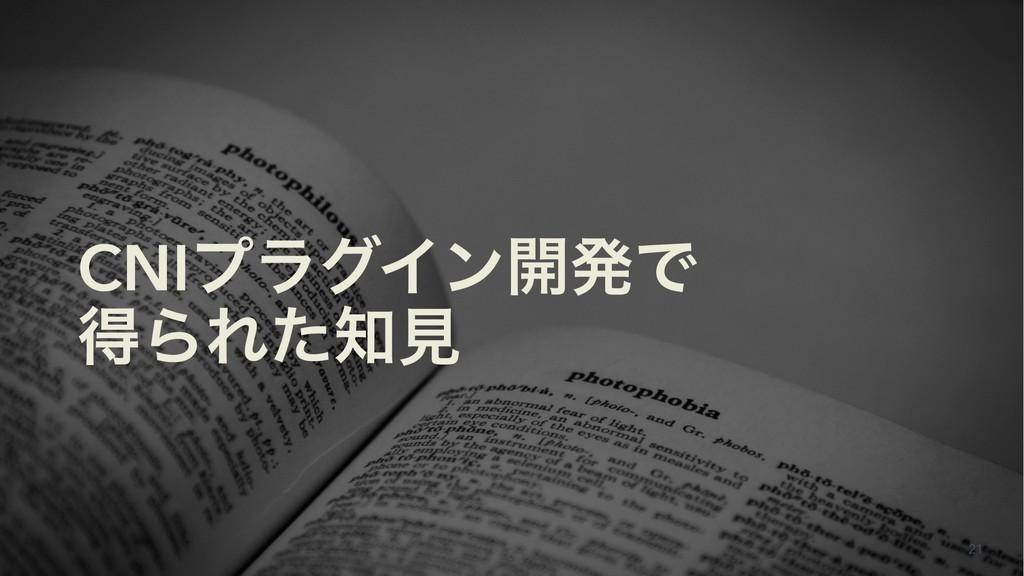 CNIϓϥάΠϯ։ൃͰ ಘΒΕͨݟ 21