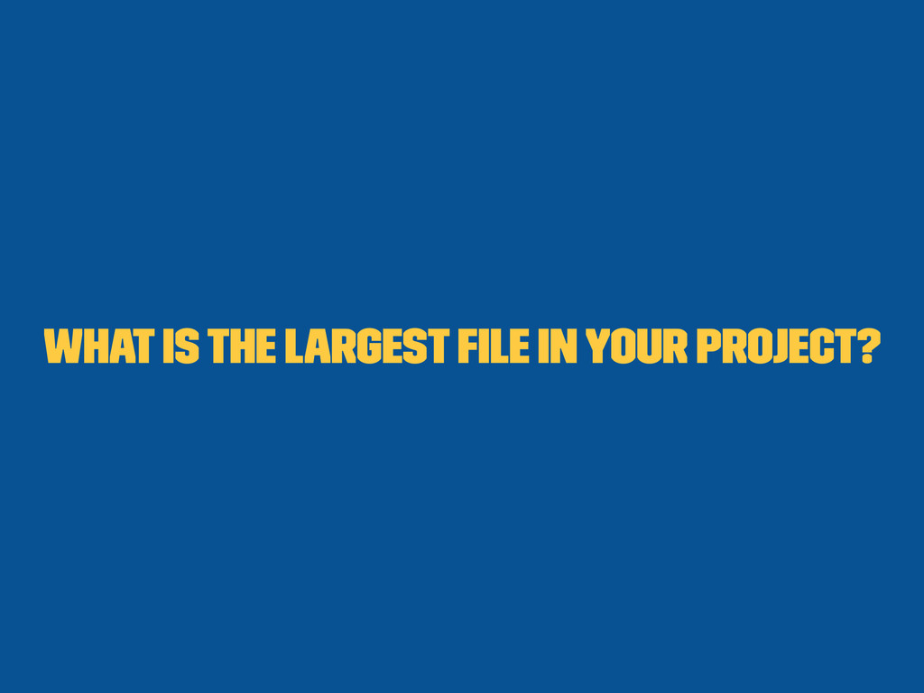 What is the largest file in your project?