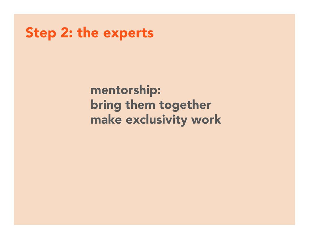 Step 2: the experts mentorship: bring them tog...