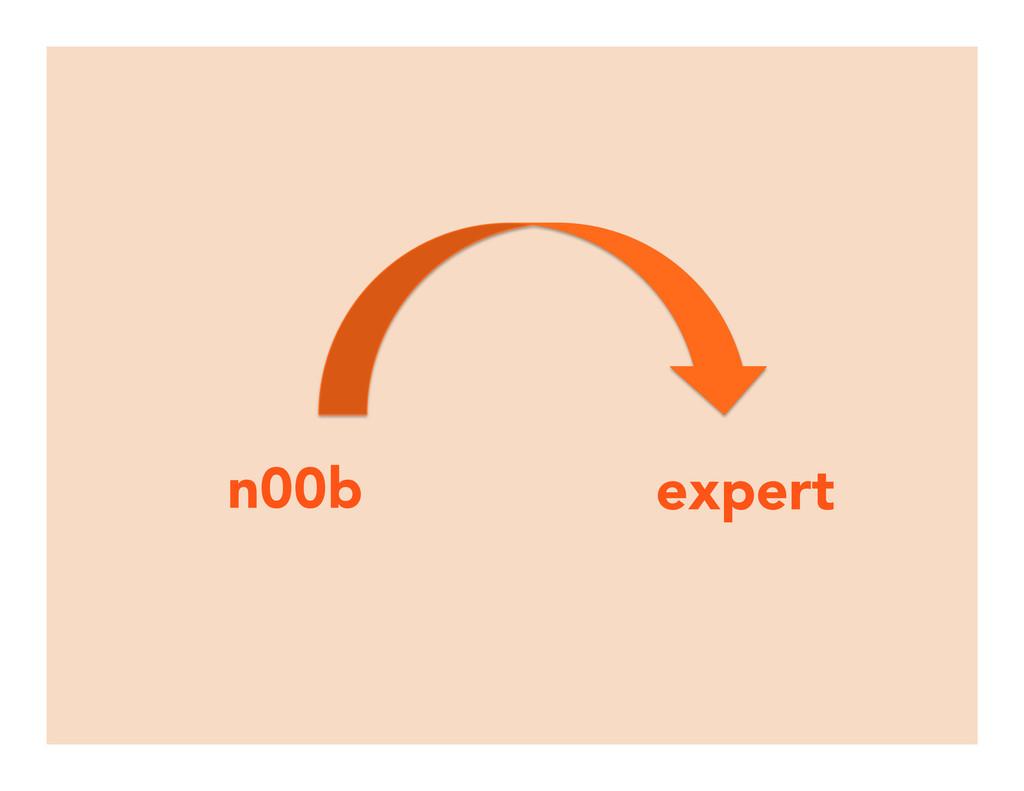 n00b expert