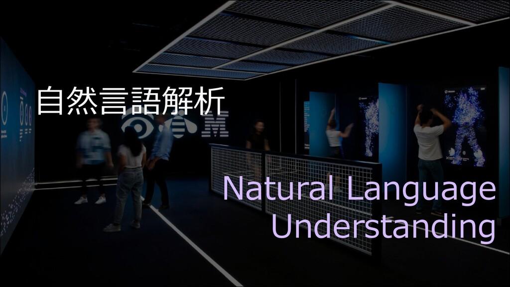 ⾃然⾔語解析 Natural Language Understanding