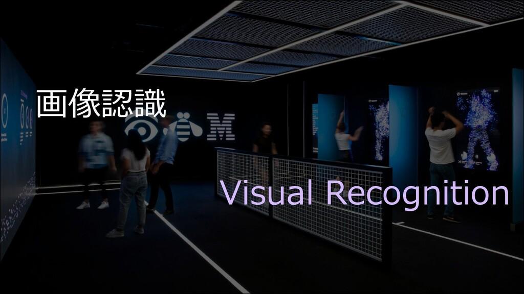 画像認識 Visual Recognition