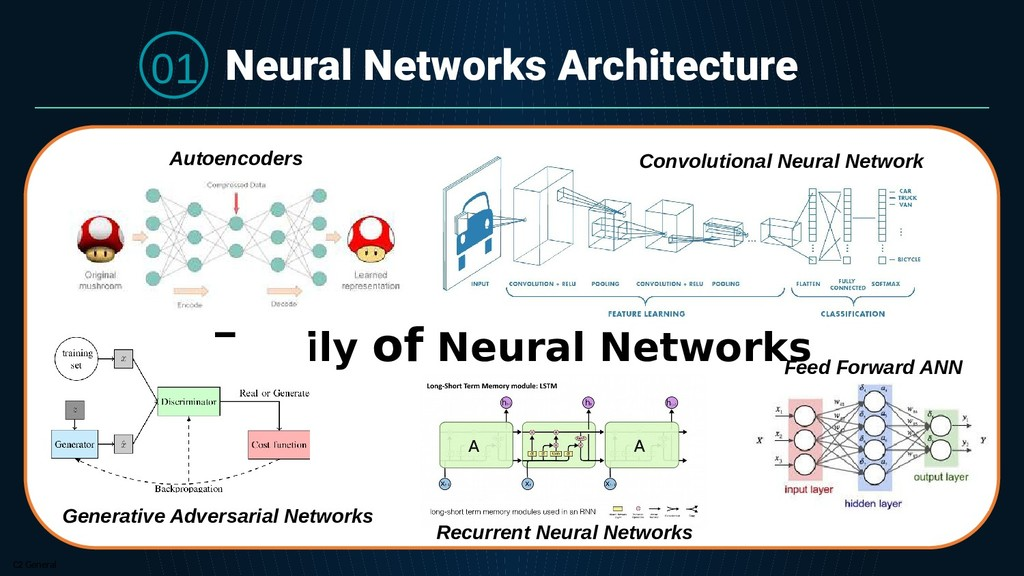 C2 General Neural Networks Architecture Family ...