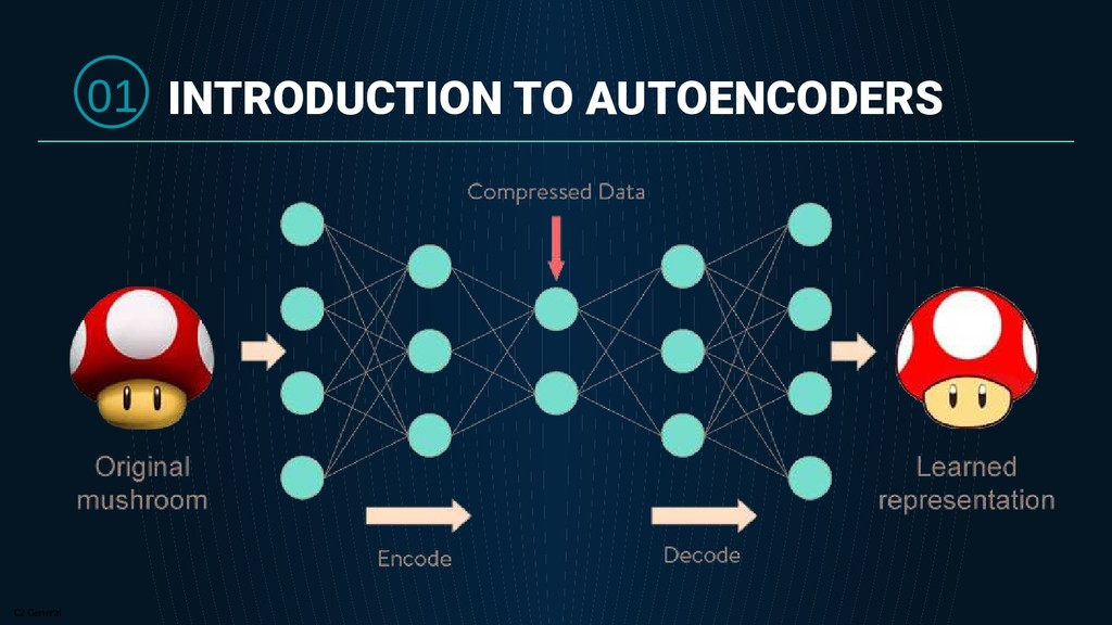 C2 General INTRODUCTION TO AUTOENCODERS 01