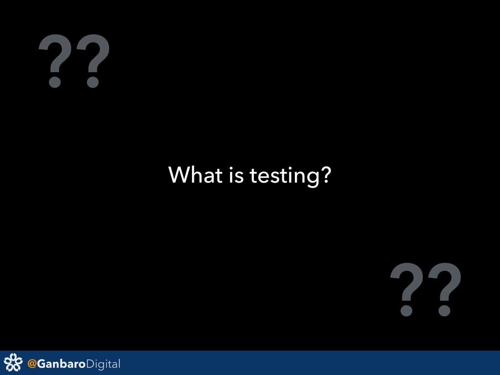 @GanbaroDigital ?? ?? What is testing?