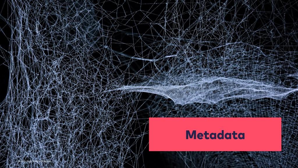 Metadata Photo by Jingyi Wang on Unsplash