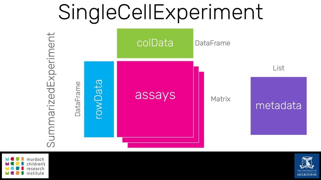 SingleCellExperiment assays rowData colData Dat...