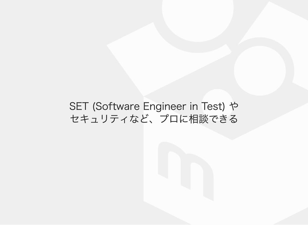 SET (Software Engineer in Test) や セキュリティなど、プロに相...