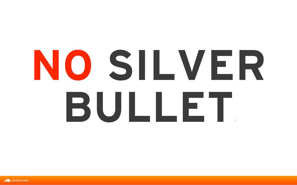 NO SILVER BULLET ˝