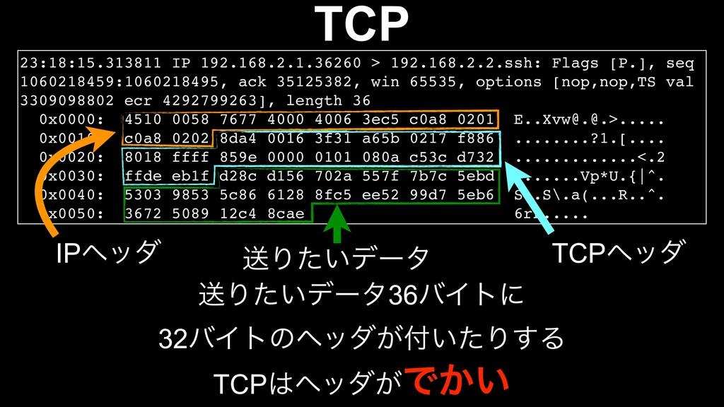 TCP ૹΓ͍ͨσʔλ36όΠτʹ 32όΠτͷϔομ͕͍ͨΓ͢Δ 23:18:15.313...