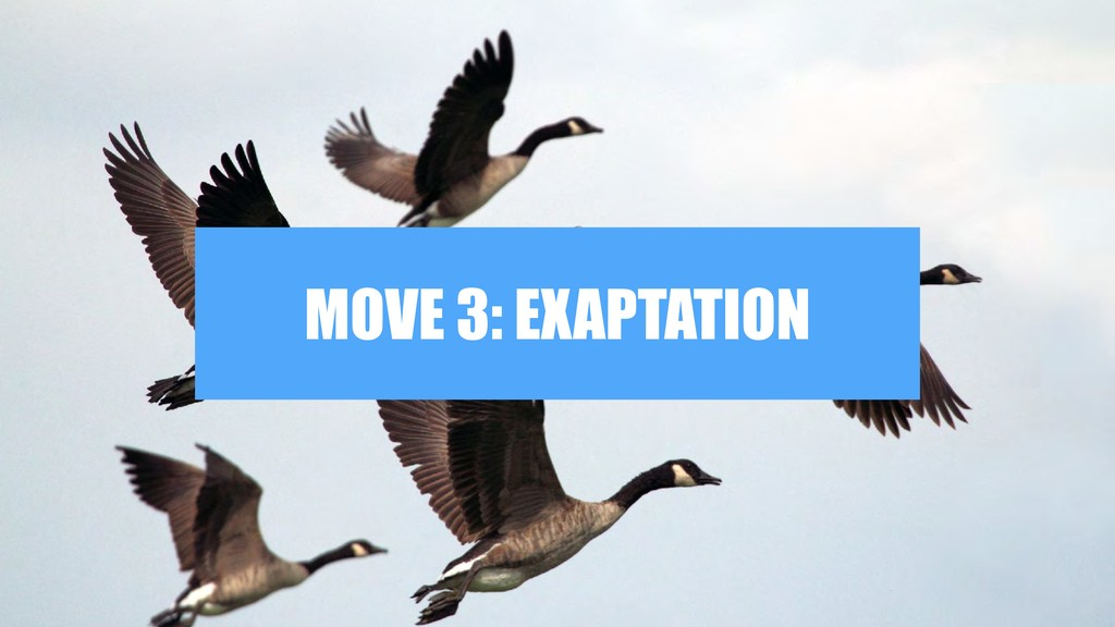 MOVE 3: EXAPTATION