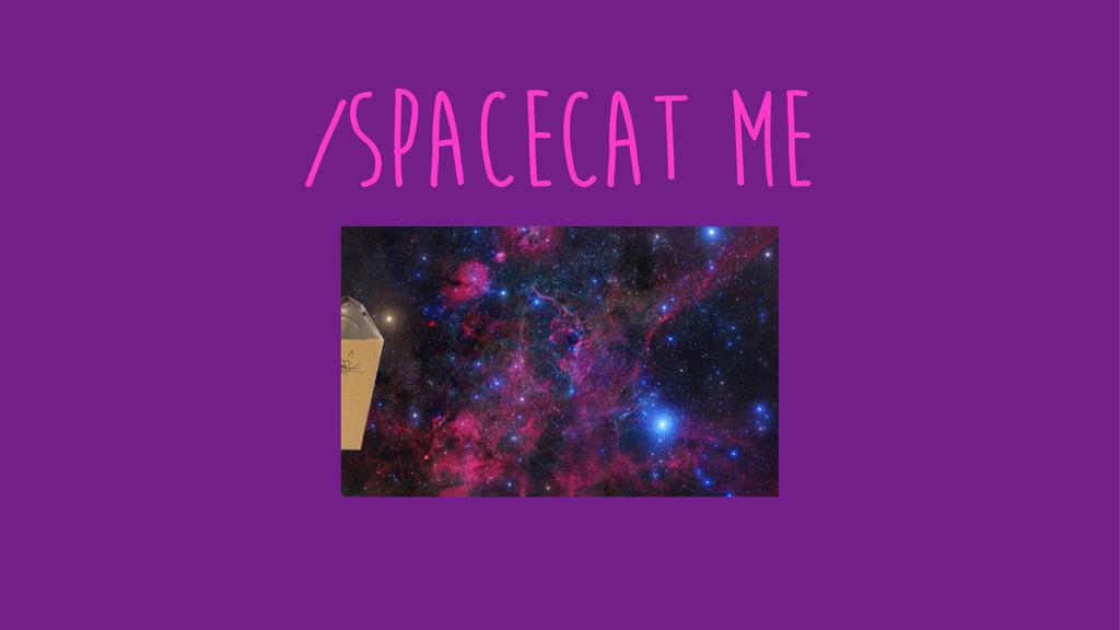 /spacecat me