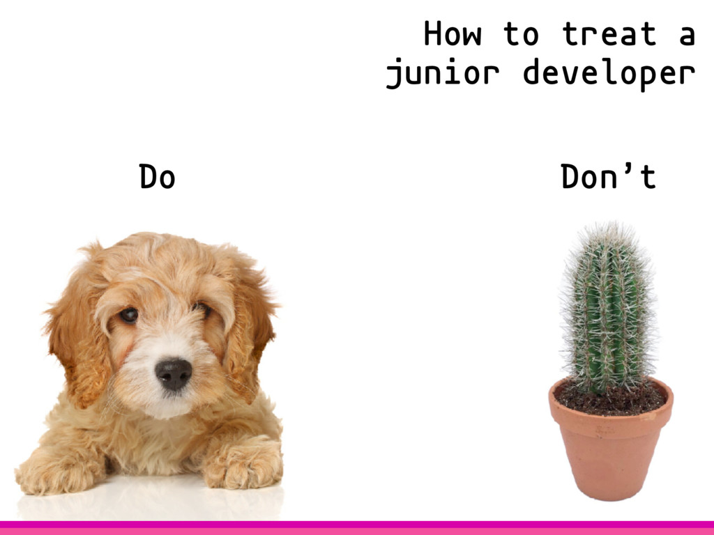 Do Don't How to treat a junior developer