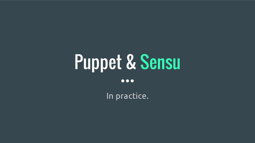 Puppet & Sensu In practice.