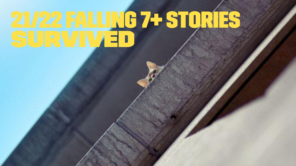 21/22 falling 7+ stories survived