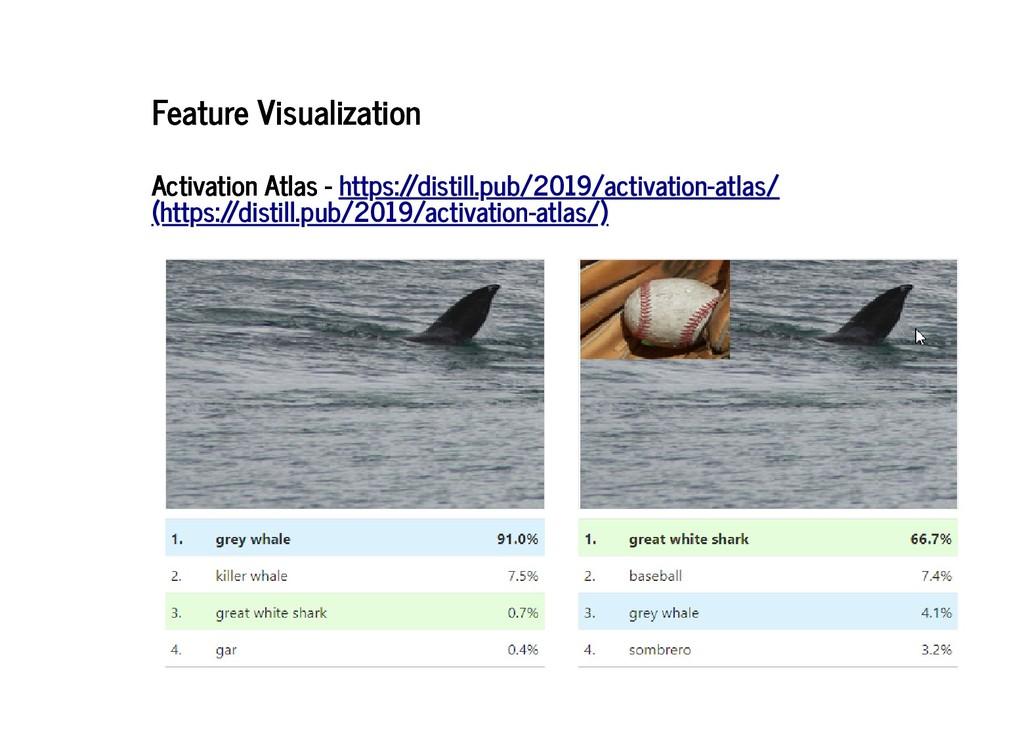 Feature Visualization Feature Visualization Act...