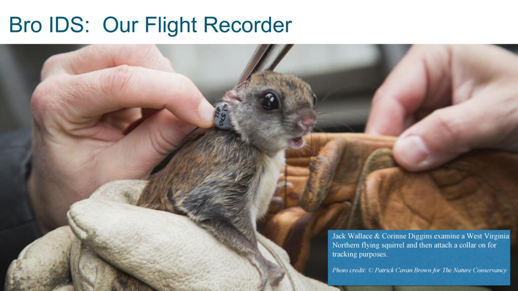 Bro IDS: Our Flight Recorder Jack Wallace & Cor...