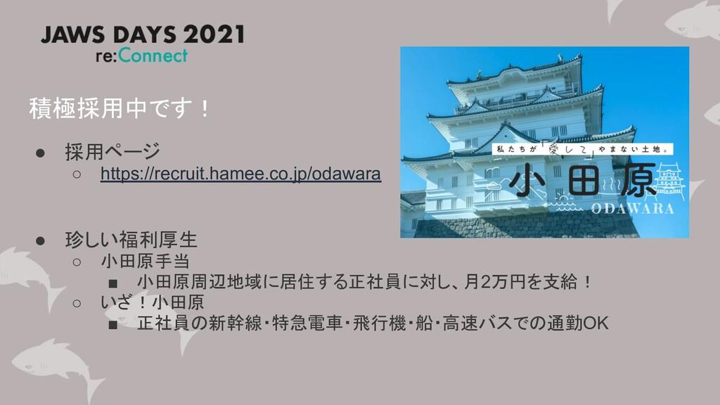 積極採用中です! ● 採用ページ ○ https://recruit.hamee.co.jp/...