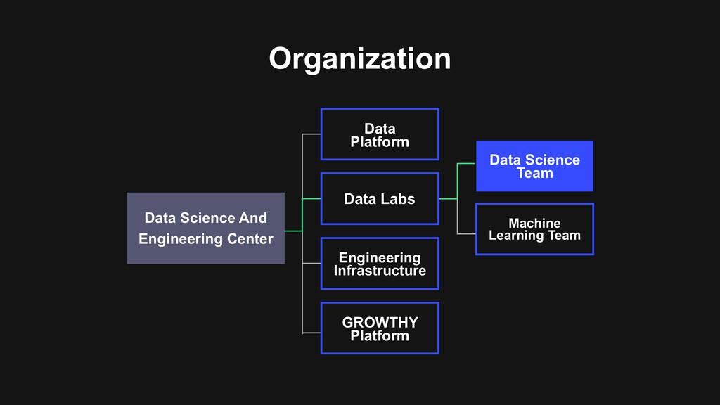 Organization Data Science Team Engineering Inf...