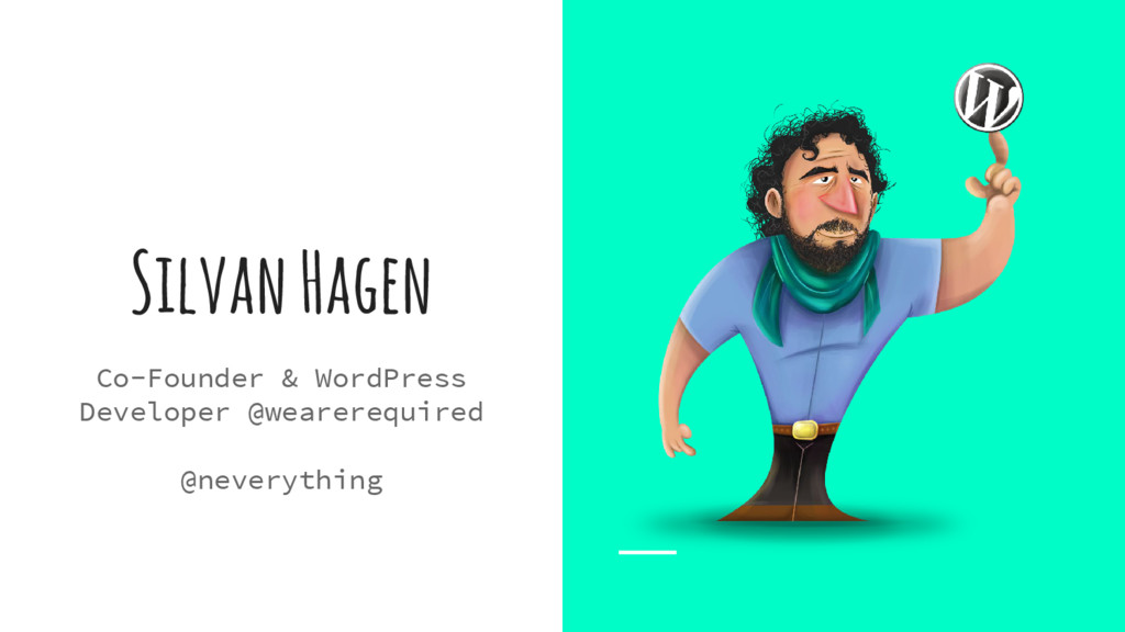 Silvan Hagen Co-Founder & WordPress Developer @...