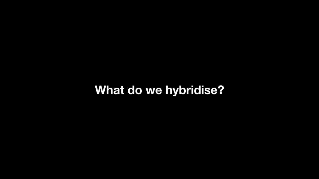 What do we hybridise?