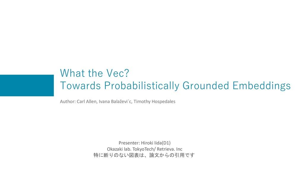 What the Vec? Towards Probabilistically Grounde...