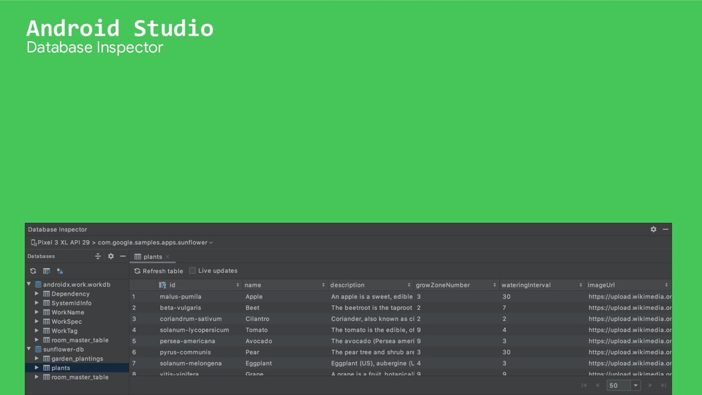 Android Studio Database Inspector