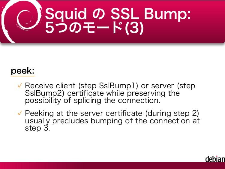 Squid の SSL Bump: 5つのモード(3) peek: Receive clien...