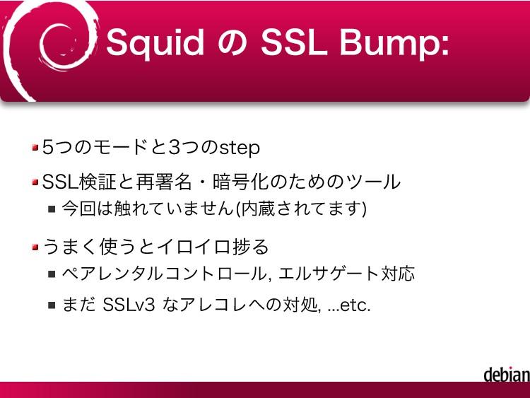 Squid の SSL Bump: 5つのモードと3つのstep SSL検証と再署名・暗号化の...