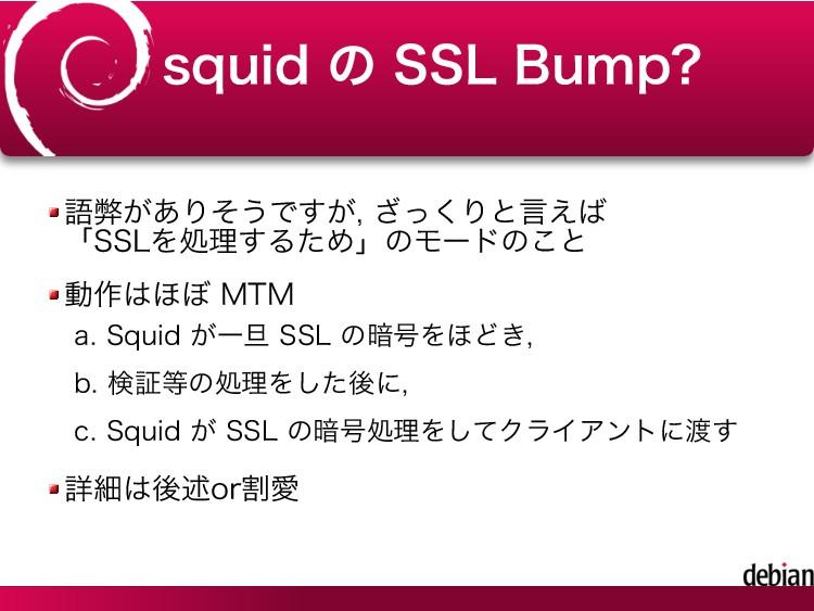 squid の SSL Bump? 語弊がありそうですが, ざっくりと言えば 「SSLを処理す...