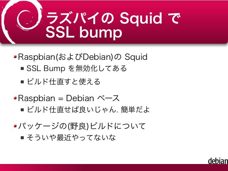 ラズパイの Squid で SSL bump Raspbian(およびDebian)の Squ...