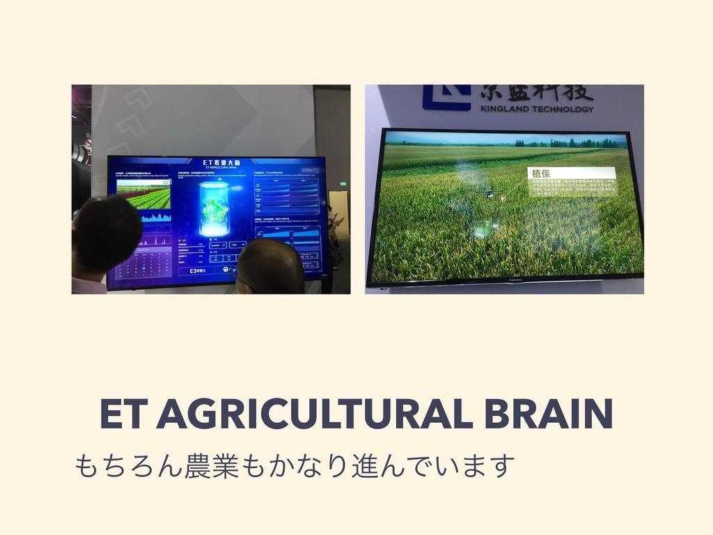 ET AGRICULTURAL BRAIN ͪΖΜۀ͔ͳΓਐΜͰ͍·͢