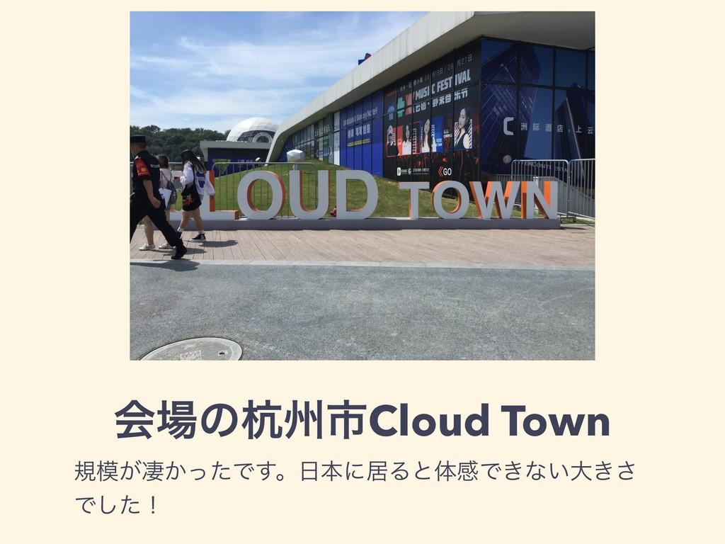 ձͷߌभࢢCloud Town ن͕ੌ͔ͬͨͰ͢ɻຊʹډΔͱମײͰ͖ͳ͍େ͖͞ Ͱͨ͠ʂ