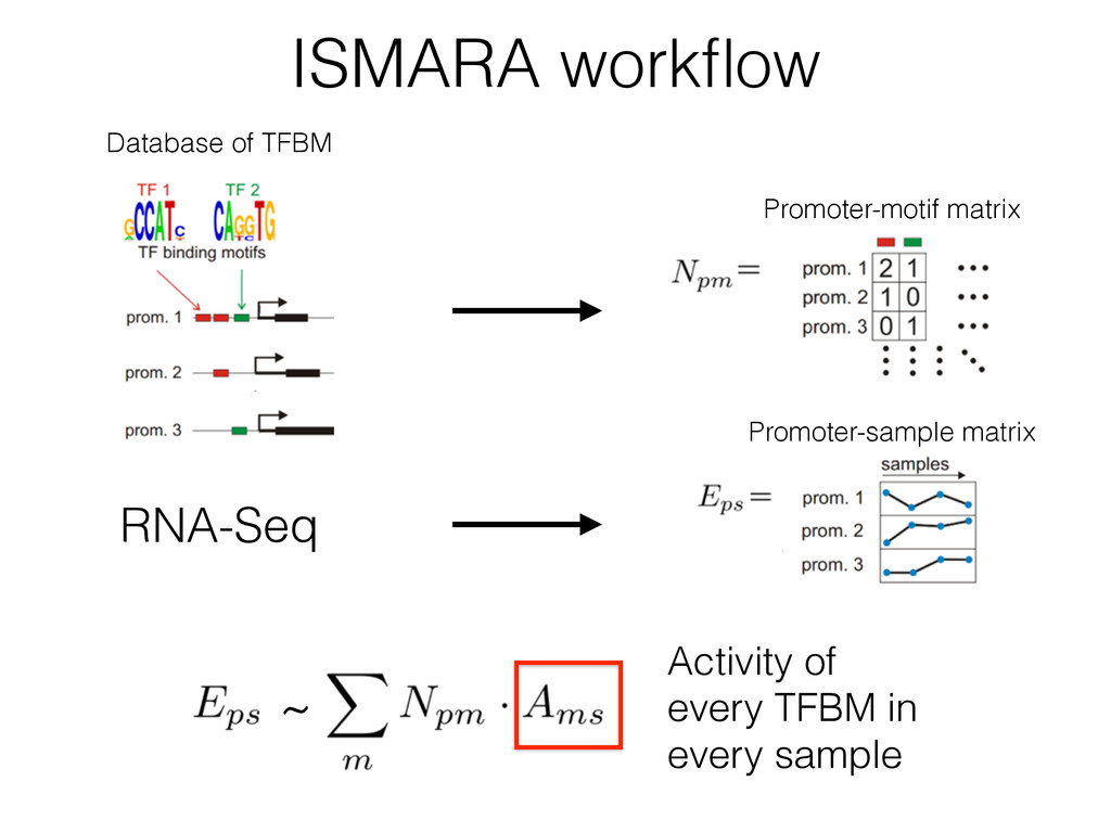 ISMARA workflow Database of TFBM ~ Activity of e...