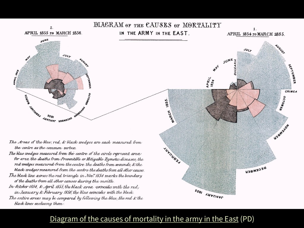 Diagram of the causes of mortality in the army ...