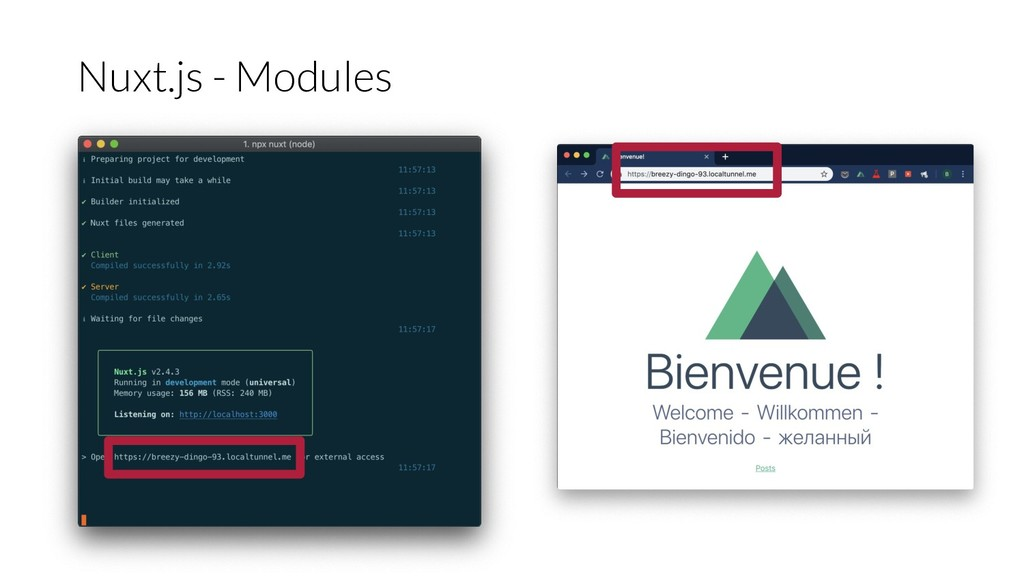 Nuxt.js - Modules