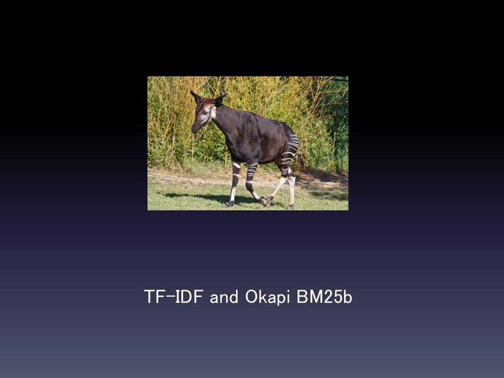 TF-IDF and Okapi BM25b