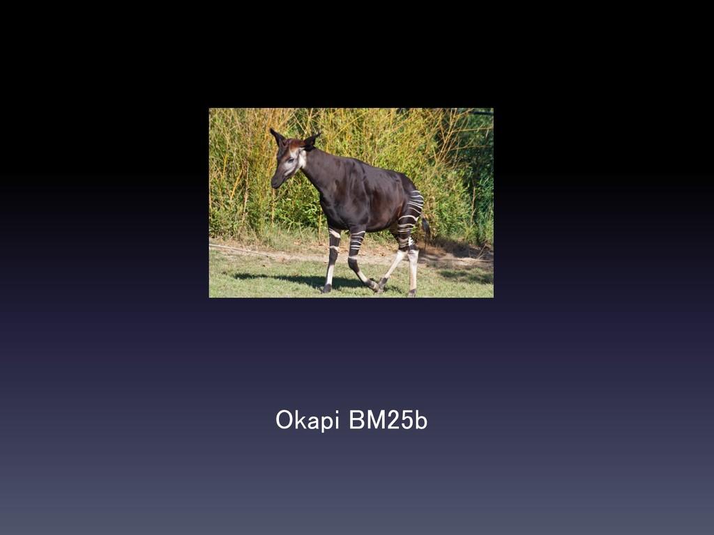 Okapi BM25b