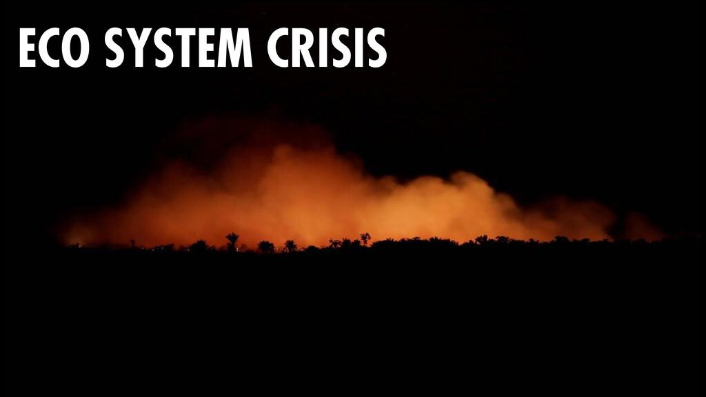 64 ECO SYSTEM CRISIS