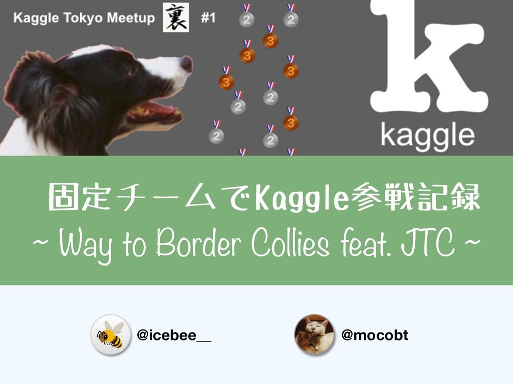 固定チームでKaggle参戦記録 ~ Way to Border Collies feat. ...