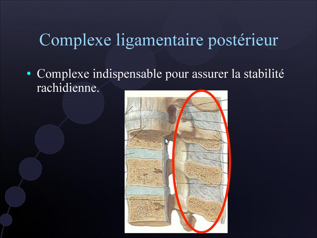 Complexe ligamentaire postérieur  Complexe ind...