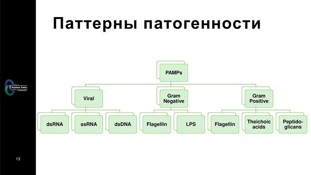 13 Паттерны патогенности PAMPs Viral dsRNA ssRN...