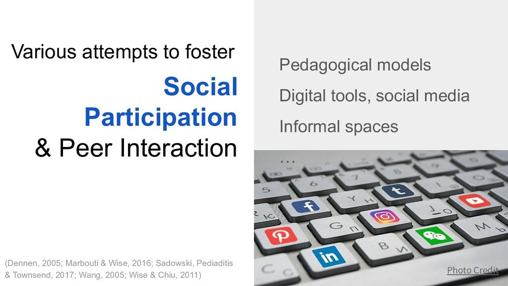 Social Participation & Peer Interaction Pedagog...